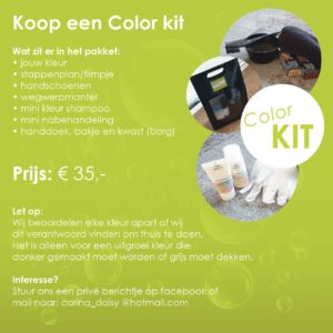 Corinas Haarmode Color kit